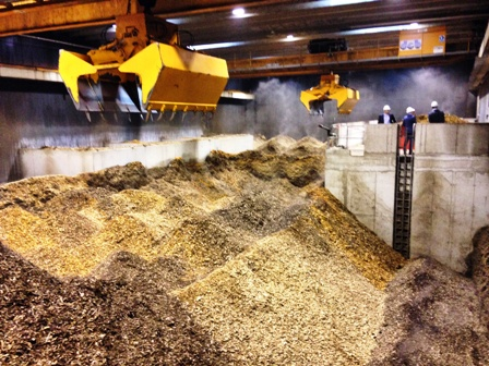 biomassaHA1